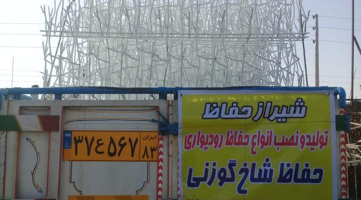 حفاظ شاخ گوزنی در شیراز