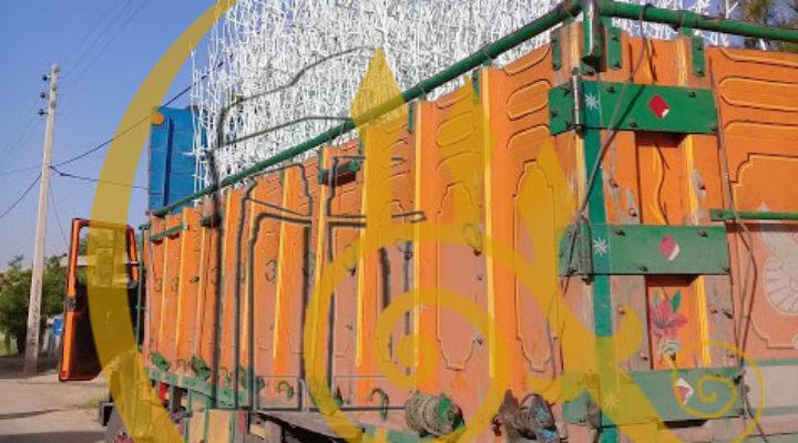 حفاظ شاخ گوزنی پروژه ارسالی به فیروزآباد