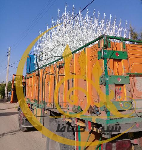 حفاظ شاخ گوزنی ارسالی به فیروزآباد